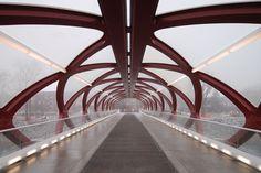 Calatrava's Calgary Peace Bridge breaks away from signature 'fishbone' structures