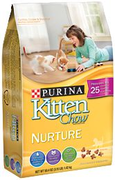 Cat Chow | Our brands | PURINA® Arabia | Nestlé Middle East