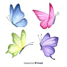 Excellent collection of butterflies Vector Butterfly Drawing, Butterfly Watercolor, Floral Watercolor, Drawings Of Butterflies, Butterfly Painting Easy, Chinese Painting Flowers, Butterfly Stencil, Butterflies Flying, Blue Butterfly