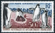 FRENCH DEPENDENCIES - TAAF 1962 50f Air Adele Penguins