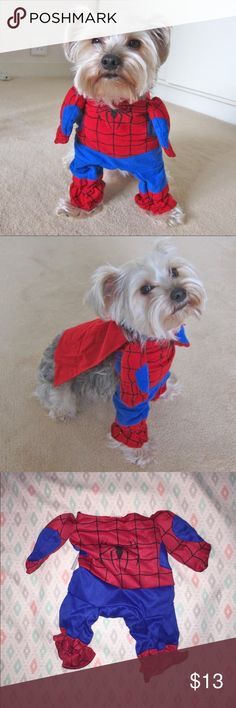 Spider-Man Dog Costume  (Price Firm!) Brand new and never worn! In my Meet the Posher post you can see pictures of my dog and he's a size medium but unfortunately this costume was a size XS/S :( It has elastic leg holes and a velcro neck strap. Spider-Man doesn't wear a cape but with this one it comes with an adorable red cape! It doesn't have to be just a dog costume, you could dress up your cat too!  Other