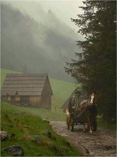 Beautiful Places, Folk, Cabin, Street, House Styles, Painting, Home Decor, Art, Google