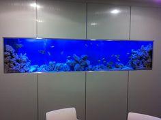 office fish tank - Google Search Fish Tank Wall, Aquariums, Google Search, Amazing, Garden, Home Decor, Tanked Aquariums, Garten, Decoration Home
