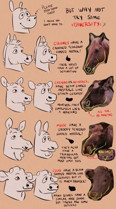 Animation Reference, Drawing Reference Poses, Drawing Tips, Drawing Sketches, Animal Sketches, Animal Drawings, Art Drawings, Horse Anatomy, Anatomy Art