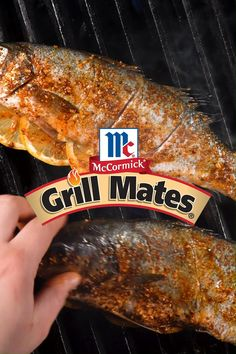 Grilling a whole fish is always an epic adventure! Coat with olive oil, season with Grill Mates® Applewood Rub, finish with a few lemon slices and get it on the grill. Try this flavorful dinner in under 30 minutes. Grilled Fish, Lemon Slice, Grilling Recipes, Olive Oil, Shrimp, Salmon, Main Dishes, Adventure, Dinner