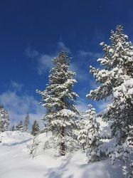 Flow Ski retreat i Dolomitterne, Italien | 9. - 16. marts 2014 - Munonne