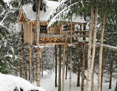 Can this be my future winter house?