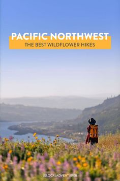 Best Hikes to See Pacific Northwest Wildflowers (Oregon and Washington) - - Summer brings the sun and wildflowers to the PNW! Here is a list of the Best Hikes to See Pacific Northwest Wildflowers in Oregon and Washington. Oregon Usa, Oregon Coast, Oregon Travel, Travel Usa, Oregon Hiking, Scenic Photography, Landscape Photography, Night Photography, Landscape Photos