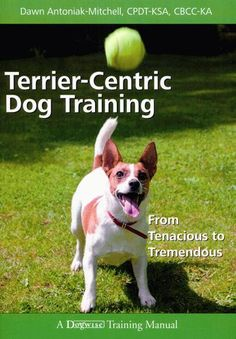 Terrier-Centric Dog Training - From Tenacious To Tremendous By Dawn Antoniak-Mitchell