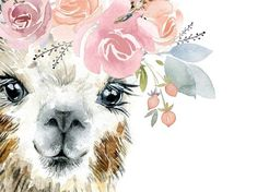 Digital - Baby animals wall art set flower farm art, nursery art girl, animal prints, Farm girl d Watercolor Pictures, Watercolor Art, Nursery Wall Art, Girl Nursery, Nursery Decor, Llama Arts, Llama Print, Farm Art, Birth Art