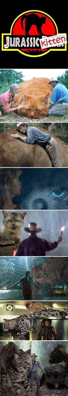 Funny Jurassic Kitten
