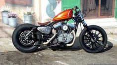 custom sportster street bob like Harley-Davidson