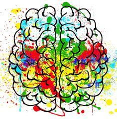 The brain's pathways to imagination may hold the key to altruistic behavior h. Corpus Callosum, Brain Structure, Autistic People, Writing Characters, Ring True, Neuroscience, Pathways, A Team, Disorders