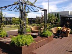 dachterrasse-gestalten-bodenbelag-terrassendielen-eisen-pergola-schlingpflanzen