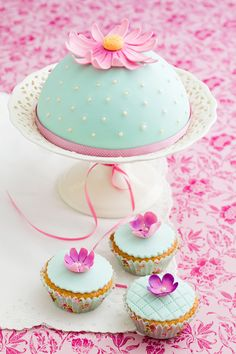 Decorated cake and cupcakes by coelfen #food #yummy #foodie #delicious #photooftheday #amazing #picoftheday