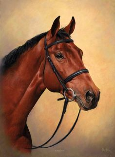 MIKE HAKEN'S HORSE PORTRAIT GALLERY