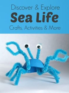 Discover & Explore Sea Life-Crafts Activities and More...great activities to prepare your class for #summer!
