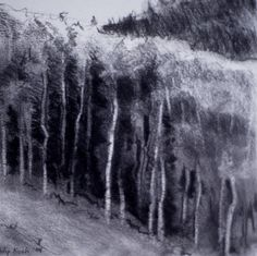 """Philip Koch, Mountain Grove, vine charcoal, 9 x 9"""". I drew this on location in Park City, Utah."""