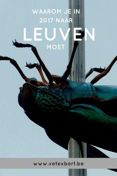 De aflopen dagen stak ik mijn licht op bij de medewerkers van Visit Leuven. Ik vroeg hen waarom je gewoon keihard naar Leuven moet komen in 2017!
