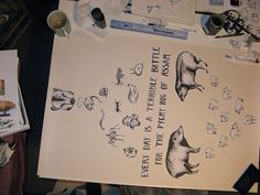 pygmy hog poster in progress | Flickr - Photo Sharing!