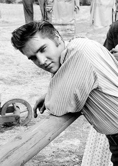 : Elvis no set de 'Love Me Tender'.