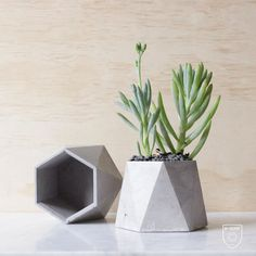 Faceted Concrete Vessel planter succulent cacti by NPCreativeAU