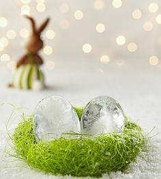 Ostern 2013, so kalt, da gefrieren die Eier im Nest.
