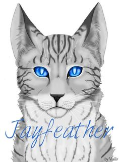 Jayfeather, drawing, warriors, my fave thunderclan cat <3 warriors