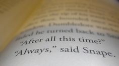 I love this line. So beautiful.