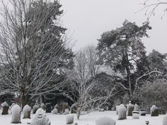 Snow in Cathays Cemetary Cardiff
