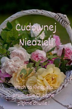 Potato Salad, Cabbage, Potatoes, Vegetables, Ethnic Recipes, Humor, Photography, Polish, Good Morning