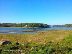 Marsh in Gloucester, MA