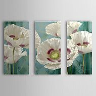 Hand-Painted Floral/Botanical Three Panels Canvas Oil Painting For Home Decoration – AUD $ 176.35