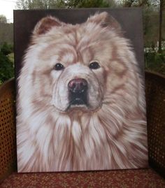 16x20 Chow Chow Canvas Painting  Hand-painted Cream Chow by Bezumi #dogart #painting #petart #chowchow