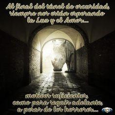 Presente Consciente: al final del túnel...