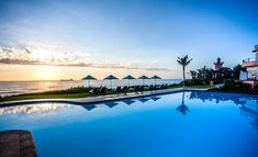 offering a gourmet café menu, while the lounge area is the perfect spot to unwind and watch the dolphins frolic around. Beverly Hills Hotel, Holiday Resort, Lounge Areas, Terrace, Ocean, Dolphins, Resorts, Water, Outdoor Decor