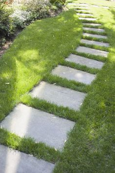 When active feet beat a compacted pathway through your struggling lawn, it's best to bow to the inevitable. Instead of renting aerators, installing awkward fencing or...
