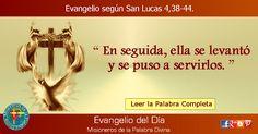 MISIONEROS DE LA PALABRA DIVINA: EVANGELIO - SAN LUCAS 4,38-44