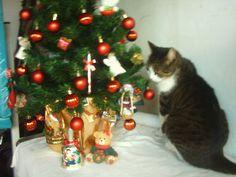 Giulia no Natal