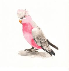 watercolor painting of birds | Louise De Masi Fine Art: Watercolor Paintings for Etsy
