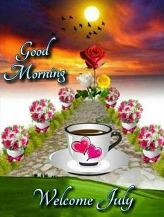 Good Morning Images For Whatsapp Good Morning Wishes Gif, Good Morning Beautiful Flowers, Good Morning Nature, Good Morning Happy Sunday, Good Morning Roses, Good Morning Images Flowers, Good Morning Photos, Morning Pictures, Good Night Friends Images
