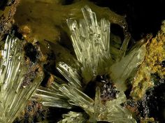 Scholzite. Snowstorm Mine, Battle Mountain District, Lander County, Nevada, USA Taille=3.8 mm Photo Bebo