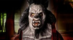 """Face Off Divide & Conquer Spotlight Challenge: """"Pack Leaders"""" - This is Ethereal Effects' ferocious Alpha wolf who chops wood by day and is a raging beast by night! Prosthetic Makeup, Alpha Wolf, Season 12, Fx Makeup, Face Off, Special Effects, Ethereal, Beast, Challenges"""