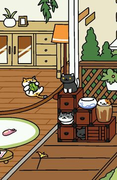 Cats in pots. O__o
