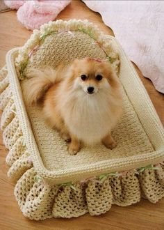 Cute dog in crochet bed****To bad I don't have a little doggy all my babies are BIG babies**** Crochet Dog Clothes, Crochet Dog Sweater, Pet Clothes, Dog Crochet, Free Crochet, Pet Beds, Dog Bed, I Love Dogs, Cute Dogs