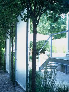 Frosted glass screens Glass Screen, Frosted Glass, Screens, Arch, Outdoor Structures, Garden, Plants, Projects, Etched Glass