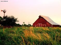 I have a weird attraction to barns. Especially olds broken down ones. There's a beauty in their age & to the imagination for their history.