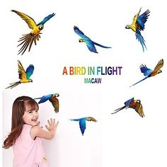 FangeplusTM Beautiful Parrot A Bird in Flight Macaw DIY Removable Art Mural Vinyl Waterproof Wall Stickers Kids Room Decor Nursery Decal Sticker Wallpaper 236x177 *** Want additional info? Click on the image.
