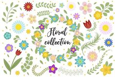Floral collection by Lucia Fox on @creativemarket