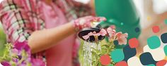 O Blog com dicas de dçecãoora e jardinagem , que voê cnêão vãai deixar de acessar